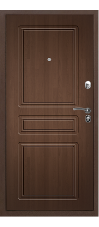 Металлическая дверь ПРАКТИК MDF снаружи