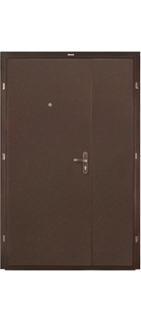 Металлическая дверь ПРОФИ DL снаружи